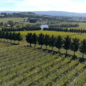 Macedon Ranges Wine – regional showreel