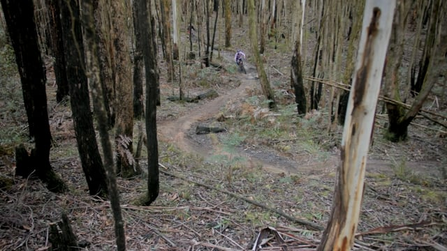 Riding in the Macedon Ranges